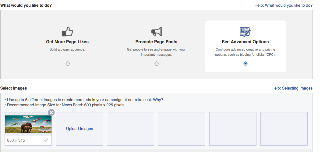 Advanced settings for facebook ads