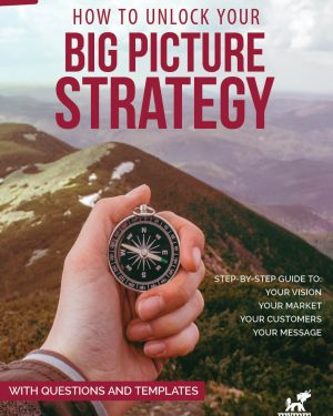 Big Picture Srategy book cover